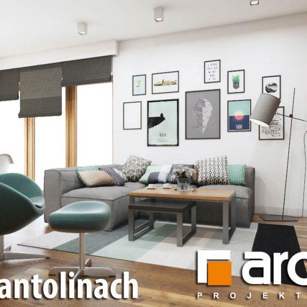 """Szkic przykładowego salonu w domu o nazwie """"Dom w Santolinach"""" firmy Archon"""