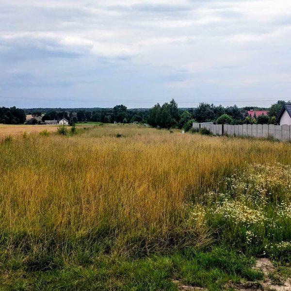 Widok na okolicę od strony północnej